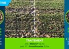 Diaporama comparant des résultats de désherbage sur adventices céréales entre un terrage superficel et un terrage classique, ainsi qu'entre des pluies simulées et des pluies naturelles